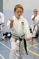 Click to view album: USKFI Brown & Black Belt Kata Course Sept 2015