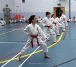 USKFI Grading Weekend March 2013 (8)