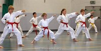 Click to view album: USKFI Grading Weekend White-Yellow Belt