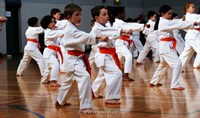 Click to view album: White & Orange Belt Grade March 2012