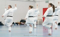 Click to view album: Brown & Black Belt Course Feb 2012