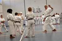 Click to view album: Sensei Brennan Course Sept 2012