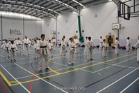 Click to view album: Brown & Black Belt Course Jan 2012