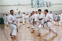 Click to view album: Summer Kata Course July 2014