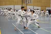 Click to view album: USKFI Kumite Course & Open Squad Training