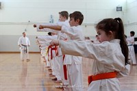 Click to view album: USKFI Orange - Brown Belt Course Jan 2015