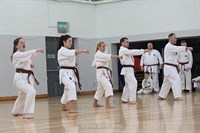 Click to view album: USKFI Grading Weekend March