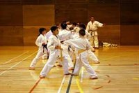 Click to view album: 2. Kyu Grading, March 2006