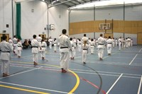 Click to view album: USKF Orange to Black belt Course Sept '08