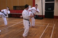Click to view album: Brown & Black belt Course Jan 09