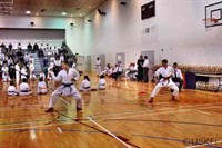 Click to view album: Shotokan Cup October 2009