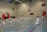 Click to view album: Kyu Grade Course Jan 2012
