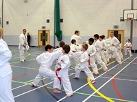Click to view album: White-Purple belt Course January 09