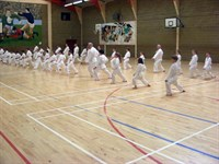 Click to view album: Newbridge and Kilcullen grading March '09