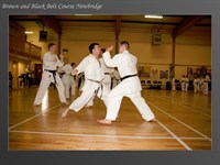 Click to view album: Brown and Black Belt Course Newbridge 09-05-09
