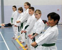 Click to view album: USKFI Green - Brown Belt Grade March 2013
