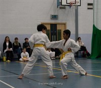 Click to view album: White >yellow belt grade March 11