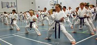 Click to view album: Sensei Sherry & Sensei Brennan Grade Nov 2012